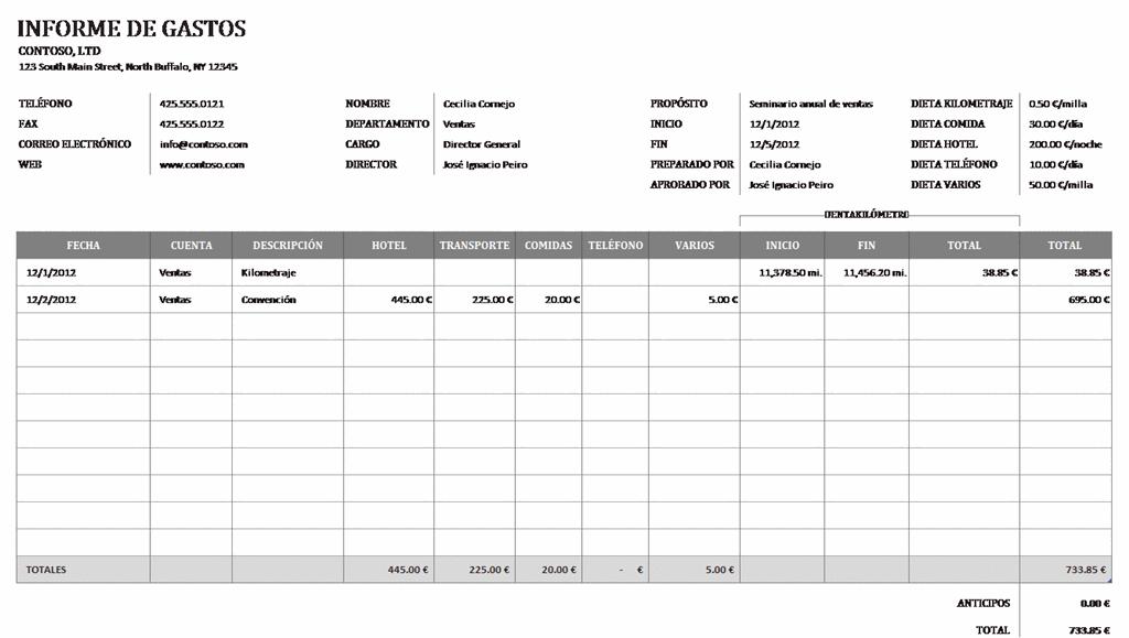 Excel 2013: Informe de gastos | Informática Educativa
